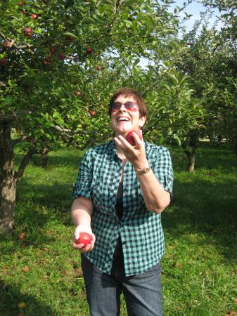 Apple Picking on Rosh Hashanah: Caroline 748