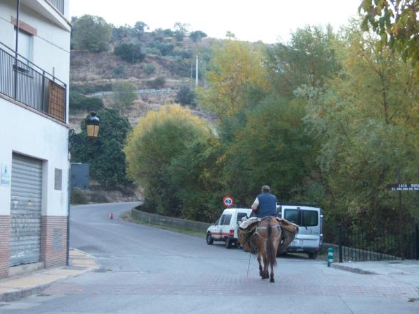 Last Album from Spain: Pictures (to be sorted) 002