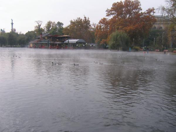 Thermal pond at Millennium Park