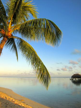 French Polynesia: IMG_8049