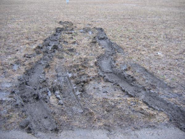 Tire tracks from getting stuck in the mud at Waterworks Park